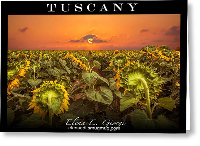Sunset Posters Greeting Cards - Tuscany Greeting Card by Elena E Giorgi
