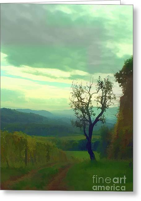 Italian Landscapes Greeting Cards - Tuscany vineyard  Greeting Card by Tom Prendergast