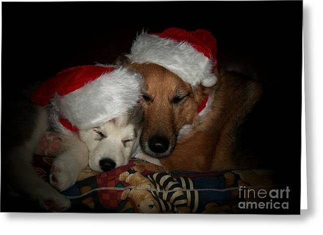 Puppies Digital Greeting Cards - Twas the Night before Christmas Greeting Card by Marjorie Imbeau