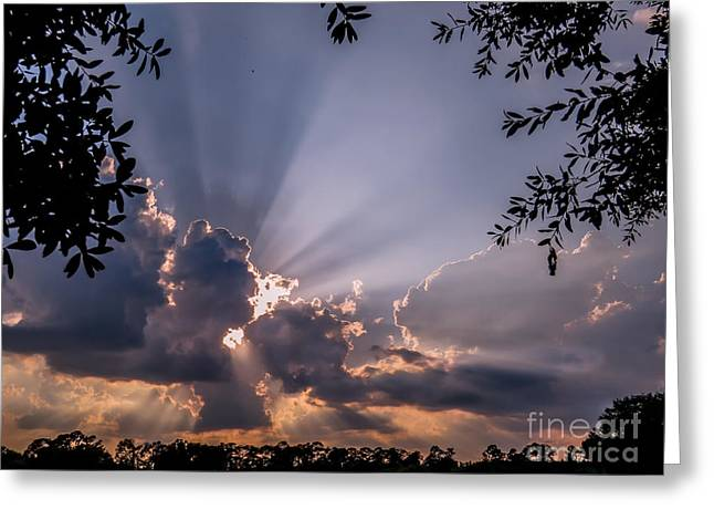 print Photographs Greeting Cards - Twilight 2 Greeting Card by Zina Stromberg