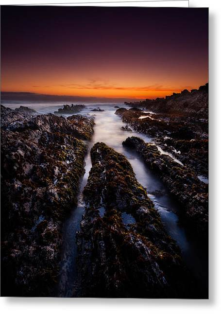 California Central Coast Greeting Cards - Twilight and Rocks Greeting Card by Dan Holmes