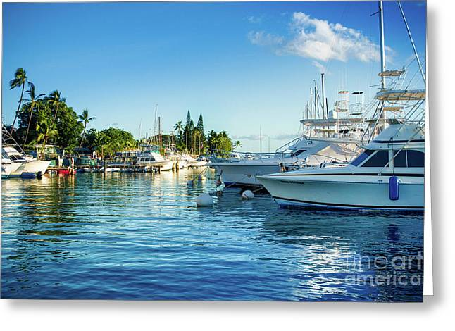 Twilight Blue Hour At The Marina  Greeting Card by Sharon Mau