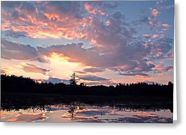 Maine Shore Greeting Cards - Twilight Glory Greeting Card by Lynda Lehmann