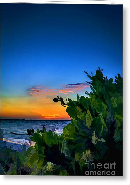 Ocean Shore Greeting Cards - Twilight Mangrove Greeting Card by Marvin Spates