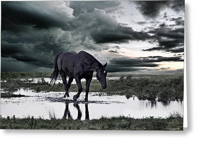 Flooding Greeting Cards - Twilight Of The Gods Greeting Card by Joachim G Pinkawa