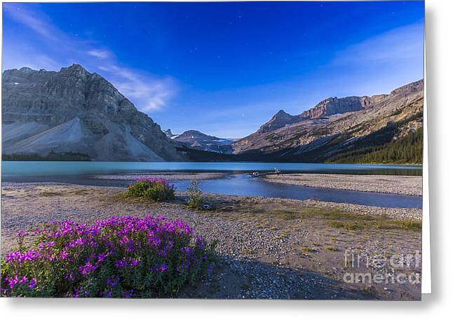 Mountain Valley Greeting Cards - Twilight On Bow Lake, Banff National Greeting Card by Alan Dyer