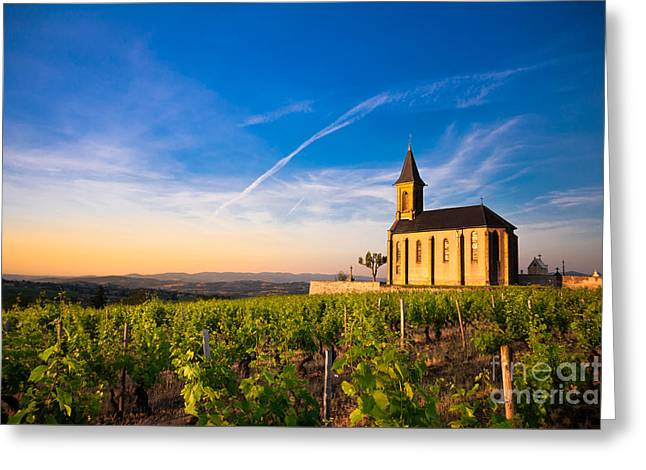 Oingt Greeting Cards - Twilight on vineyards Greeting Card by Gael Fontaine
