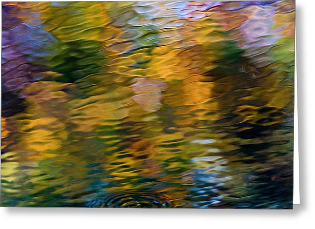 Reflection On Water Greeting Cards - Twin Ponds Reflections Greeting Card by Jim Dohms