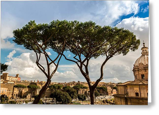 Italy Sculptures Greeting Cards - Twin Trees Greeting Card by Wajih Ben taleb