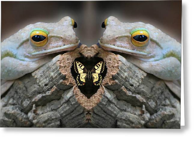 Twin Ugly Frogs About To Eat A Butterfly Greeting Card by Robert Frank Gabriel