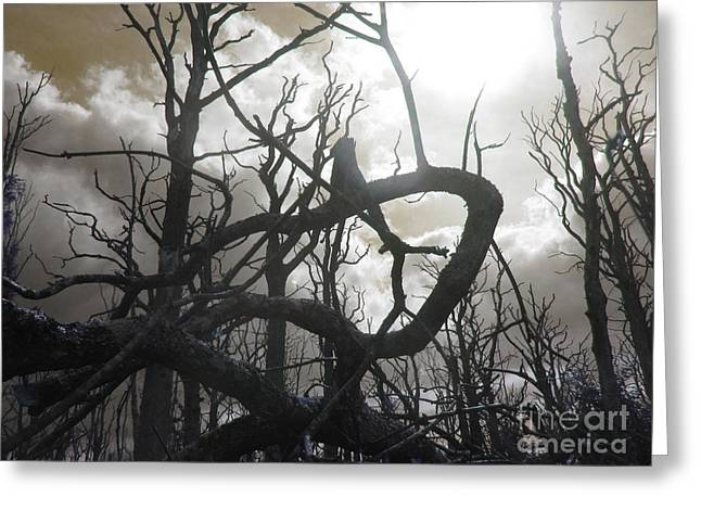 Twisted Wood Greeting Card by The Rambler