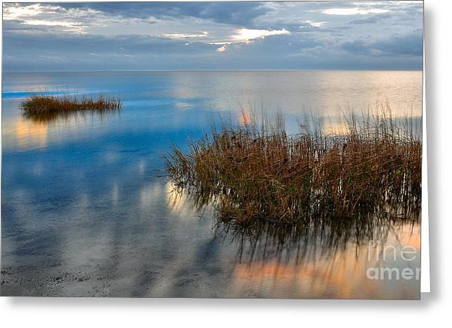 Calm Waters Greeting Cards - Two Alone in Pamlico Sound I Greeting Card by Dan Carmichael