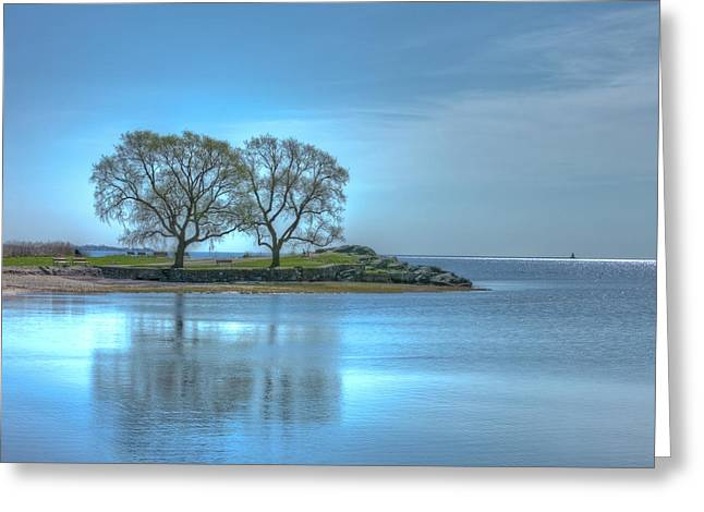 Best Sellers -  - Trees Reflecting In Water Greeting Cards - Two Beach Trees In Spring Greeting Card by John Supan