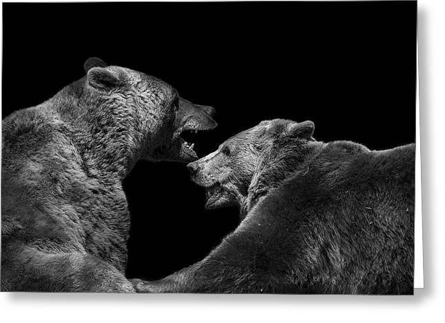Face Greeting Cards - Two Bears in black and white Greeting Card by Lukas Holas