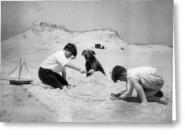 Two Boys And Dog Playing On Beach Greeting Card by H. Armstrong Roberts/ClassicStock