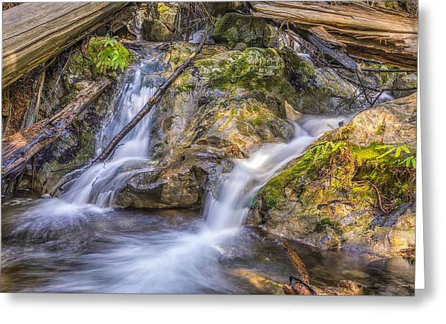 Big Sur Greeting Cards - Two Falls Greeting Card by Joseph S Giacalone