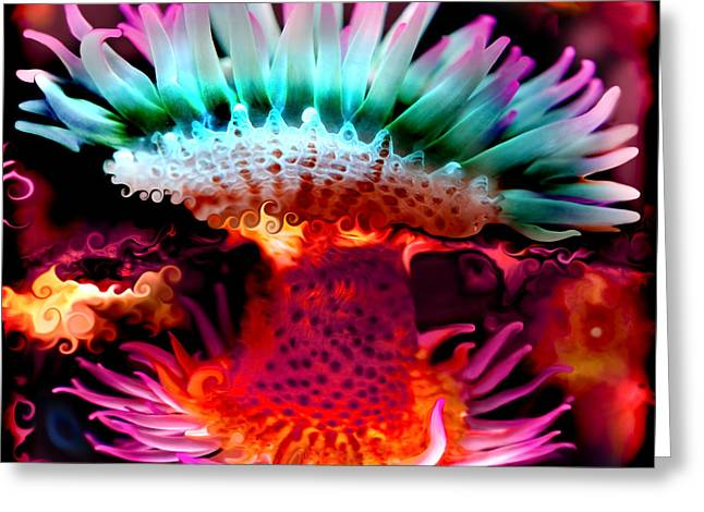 Undersea Photography Greeting Cards - Two-fold Tentacles Greeting Card by Adria Trail