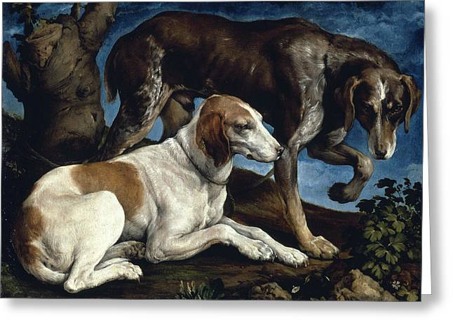Two Hounds Greeting Card by Jacopo Bassano