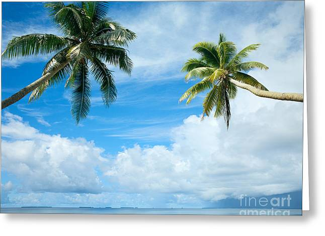 Two Palms, Turquoise Water Greeting Card by Mitch Warner - Printscapes