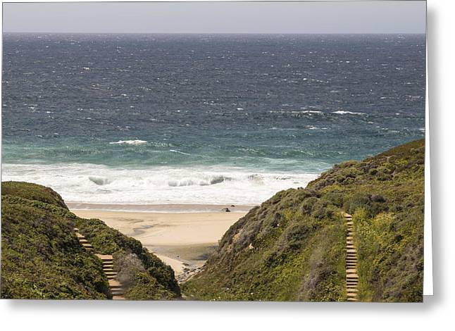 Big Sur Beach Greeting Cards - Two paths to the Pacific Greeting Card by Matt McDonald
