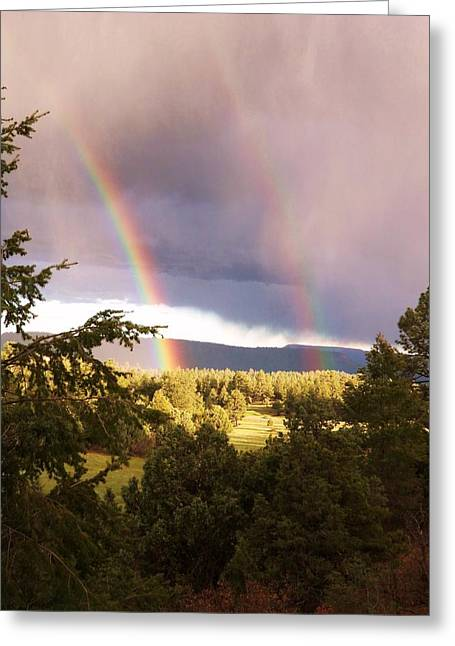 Verga Greeting Cards - Two Pots O Gold Greeting Card by Shawn Lacey