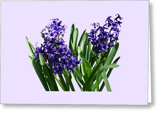 Gardeners Greeting Cards - Two Purple Hyacinths Greeting Card by Susan Savad