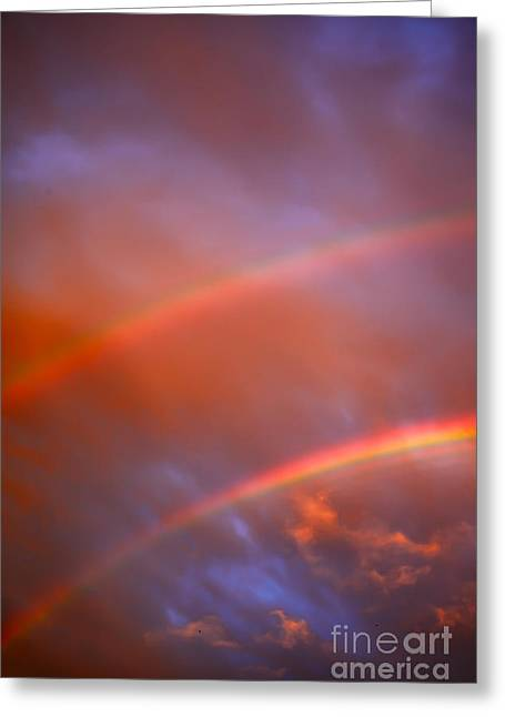 Summer Storm Greeting Cards - Two Rainbows Greeting Card by Aleksey Tugolukov