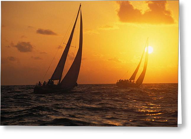 Best Sellers -  - Yellow Sailboats Greeting Cards - Two Sailboats Silhouetted Greeting Card by Bob Abraham - Printscapes