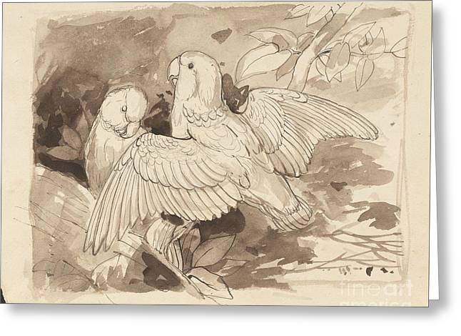 Ink Drawing Greeting Cards - Two small parrots in foliage Greeting Card by Celestial Images