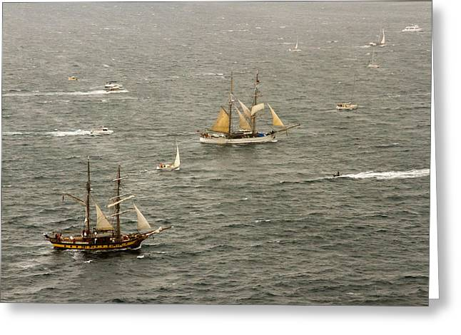 Tall Ships Greeting Cards - Two Tall Ships Enter  Sydney Harbour Greeting Card by Miroslava Jurcik