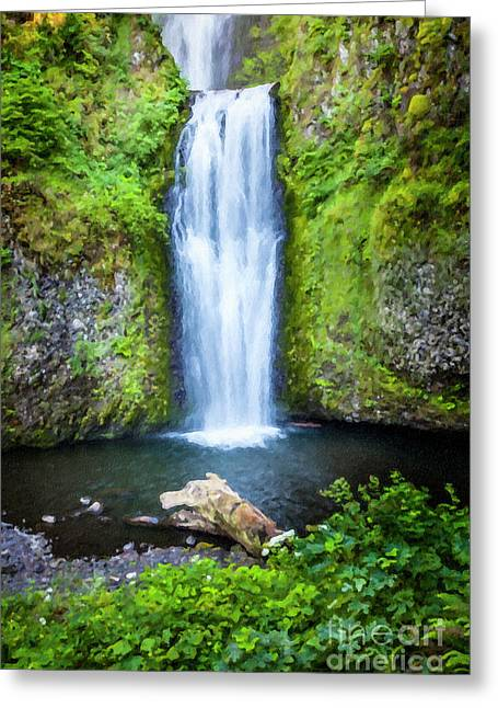 Two Tier Waterfall Greeting Card by David Millenheft