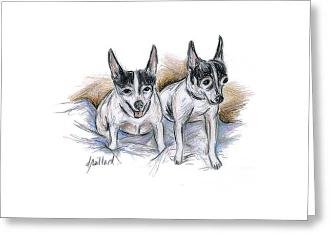 Toy Dog Greeting Cards - Two Toy Fox Terriers Greeting Card by Deborah Willard