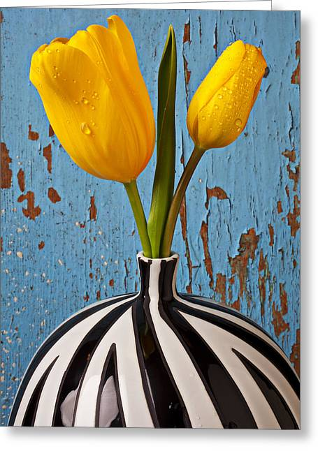 Wet Petals Greeting Cards - Two Yellow Tulips Greeting Card by Garry Gay