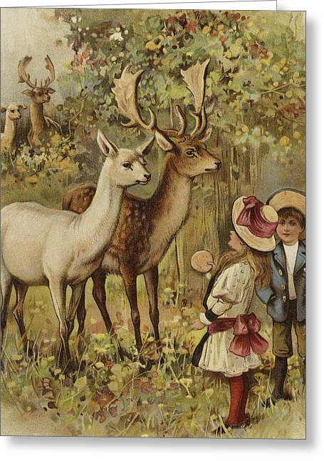Two Young Children Feeding The Deer In A Park Greeting Card by English School