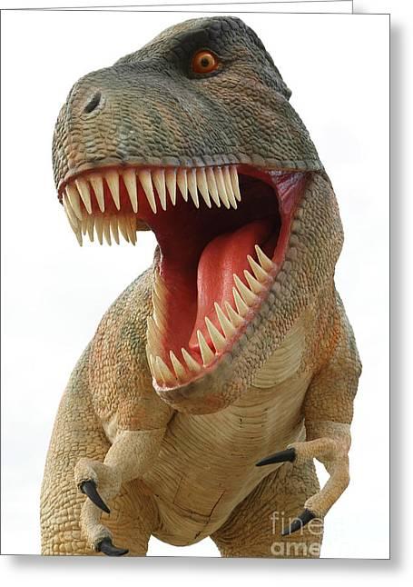 Tyrannosaurus Greeting Cards - Tyrannosaurus Rex dinosaur Greeting Card by Gaspar Avila