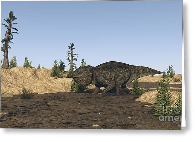 Stream Digital Art Greeting Cards - Udanoceratops Walking In Muddy Water Greeting Card by Kostyantyn Ivanyshen