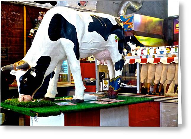 Genoa Bar Greeting Cards - Udderly Unexpected Greeting Card by Amelia Racca