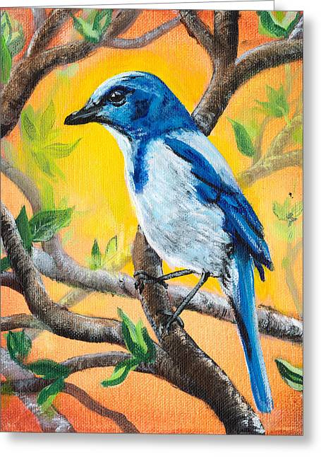 Wildlife Celebration Greeting Cards - Ultramarine Flycatcher Bird by Gretchen Smith Greeting Card by Gretchen  Smith