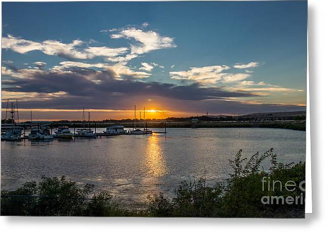 Docked Sailboat Greeting Cards - Umatilla Marina At Sunset Greeting Card by Robert Bales