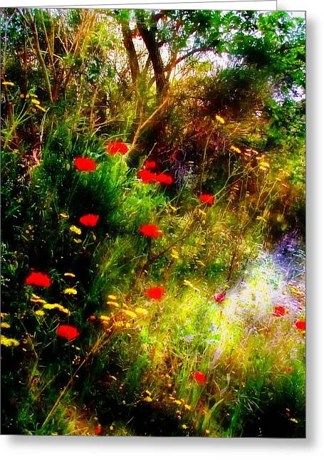 Berry Greeting Cards - Umbrian Wild Flowers 3 Greeting Card by Dorothy Berry-Lound