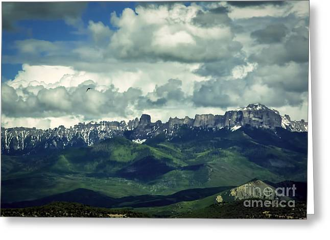 Bird Summit Greeting Cards - Uncompahgre Colorado Alpine Greeting Card by Janice Rae Pariza