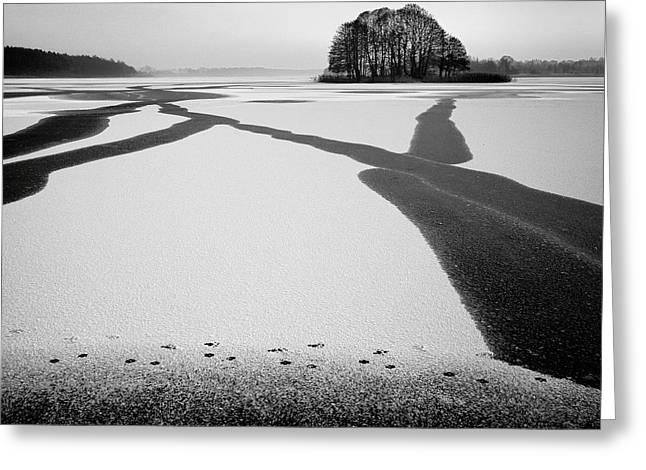Winters Greeting Cards - Under-ice Streams Greeting Card by Przemyslaw Wielicki