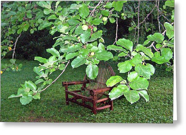 Lawn Chair Greeting Cards - Under the Apple Tree Greeting Card by Patricia Taylor