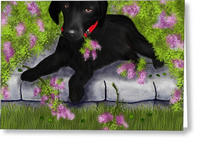 Puppy Digital Art Greeting Cards - Under the Lilacs Greeting Card by Sannel Larson
