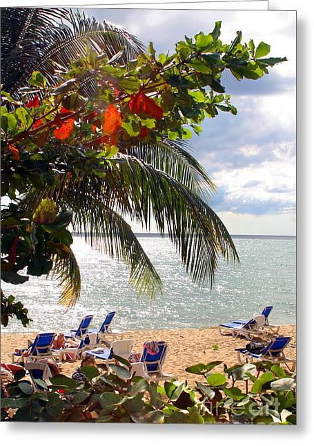 Under The Palms In Puerto Rico Greeting Card by Madeline Ellis