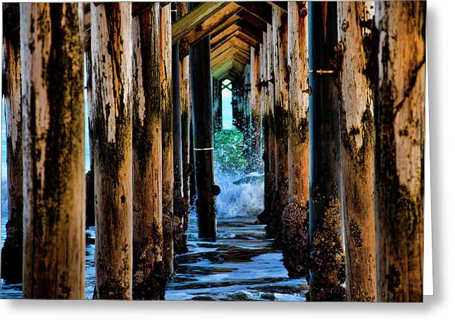 Under The Pier Greeting Card by Gina Cordova