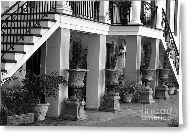 Stoop Greeting Cards - Under the Steps in Savannah - Black and White Greeting Card by Carol Groenen
