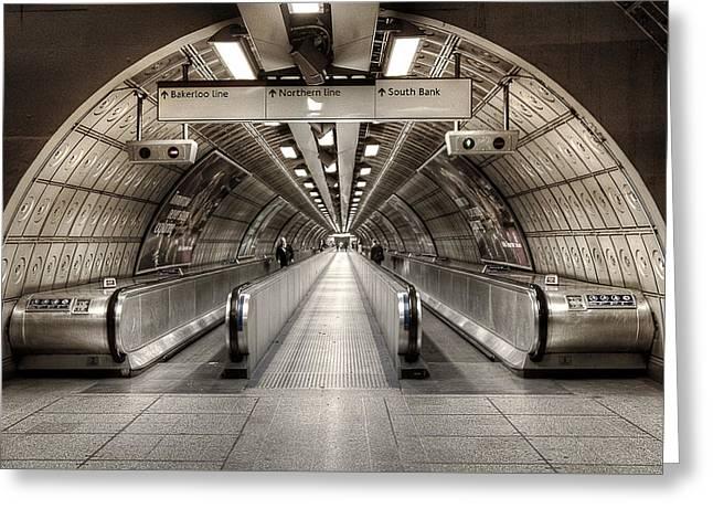 Underground Life Greeting Card by Svetlana Sewell
