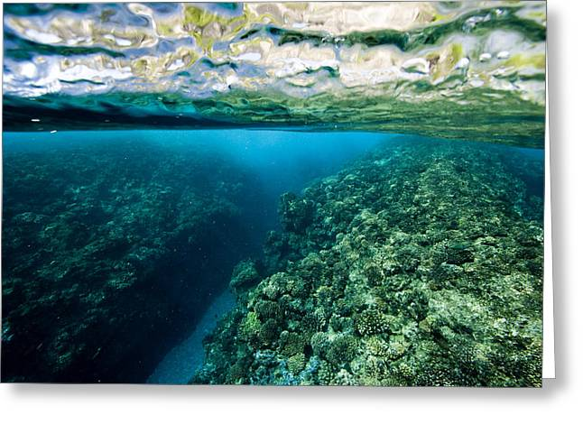 Aquatic Split Level Views Greeting Cards - Underwater Coral Reef Views In Shallow Greeting Card by Tim Laman