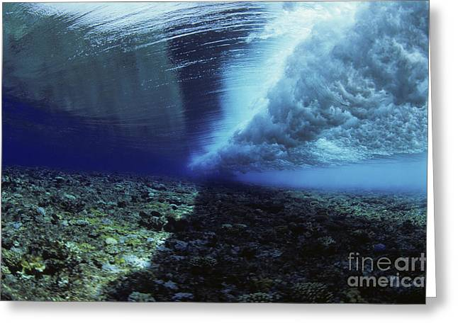 Yapping Greeting Cards - Underwater Wave - Yap Greeting Card by Dave Fleetham - Printscapes